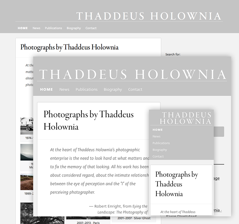 Holownia.com screenshots on desktop, tablet, & phone